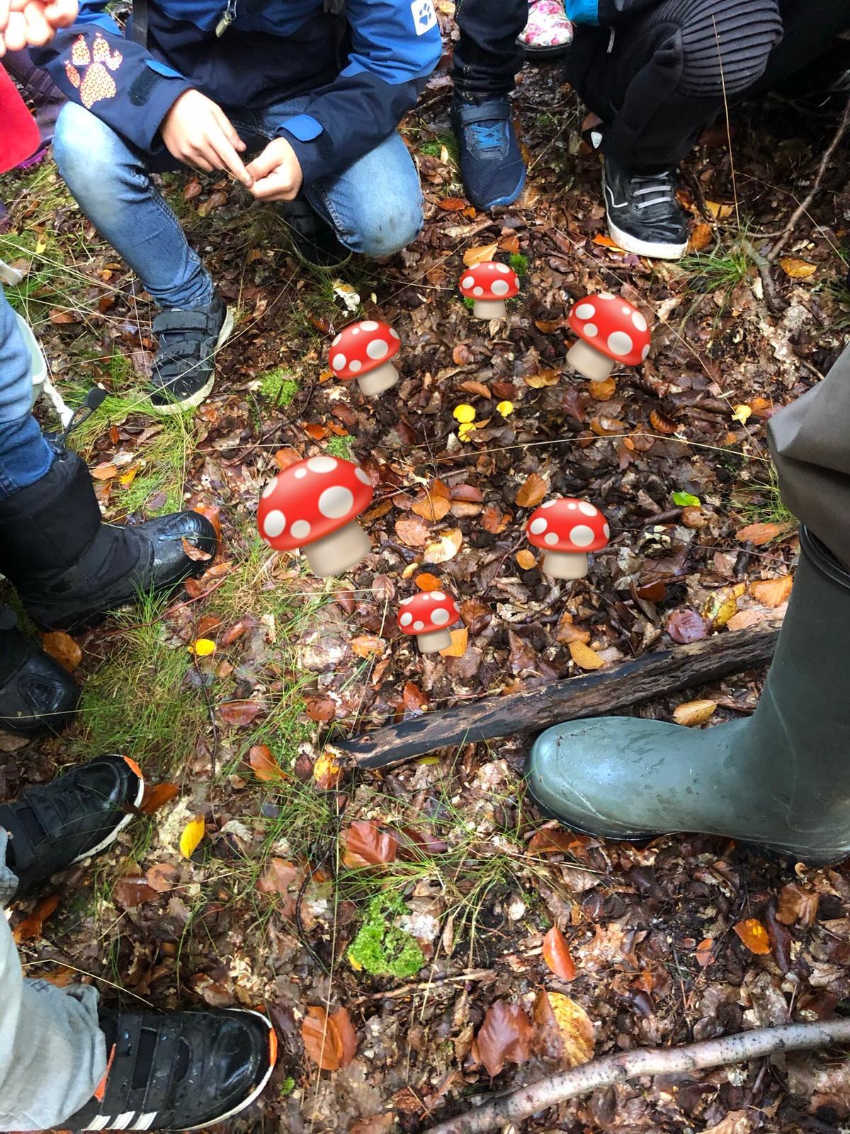Waldschultag Waldhof Zootzen Umweltbildung